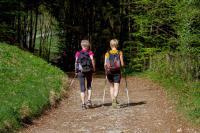 Nordic Walking in Malcesine